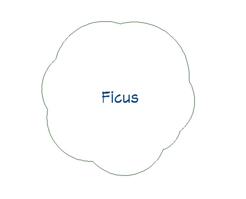 Plant Ficus 2D-Plan View