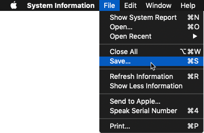 Selecting Save for the System Information Report that is open